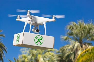 drones_food_delivery